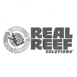 reef-bg_0004_real-reef